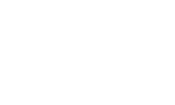 MB Holding